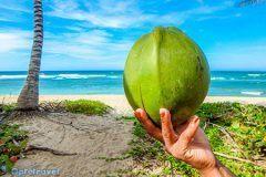 Seychelles: Voli per Agosto e Ferragosto da 500€ A/R
