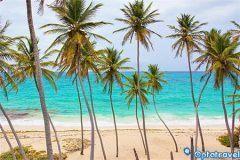 Msc crociere Caraibi: Volo + 8 giorni in pensione completa a 1.229€